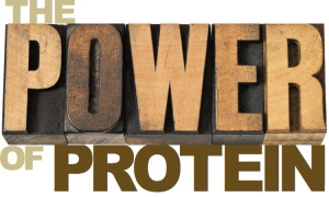 The Power of Protein logo blog-google+_jpeg