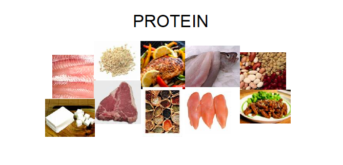 Incomplete Protein Mission Nutrition